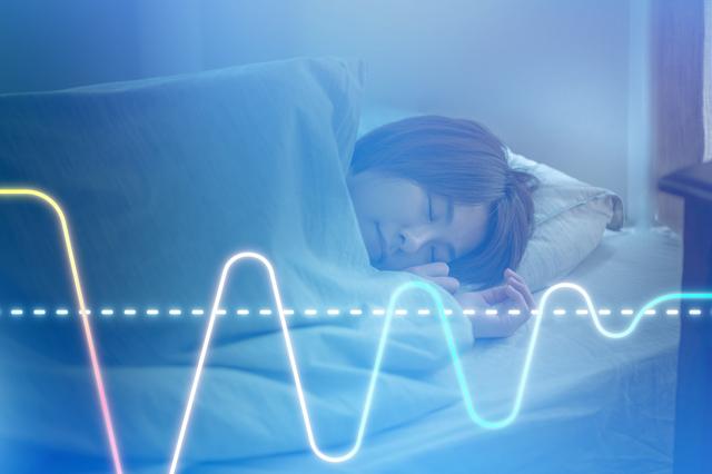 睡眠リズムは、身体の自律神経やホルモンなどの様々な生体機能が影響する